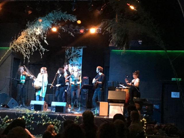 Image shows various musicians p[laying on a stage with trees over them